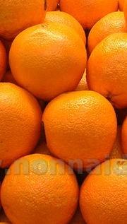 Bagna all'arancia